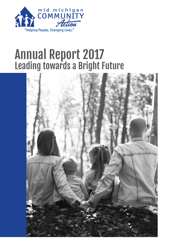 Annual Report 2017 Leading Towards a Bright Future